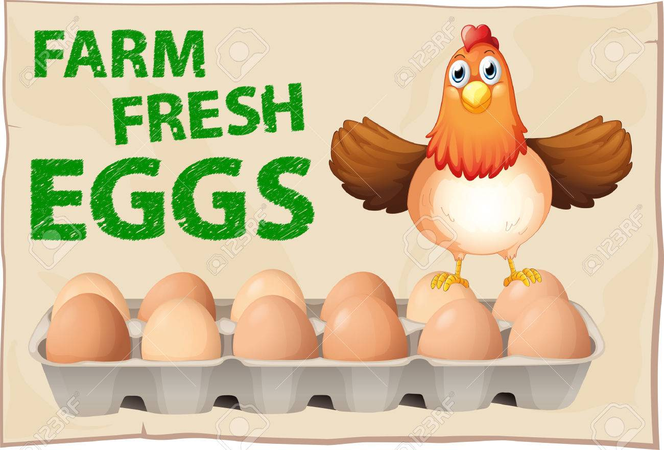 33299586-farm-fresh-eggs-poster-with-chicken